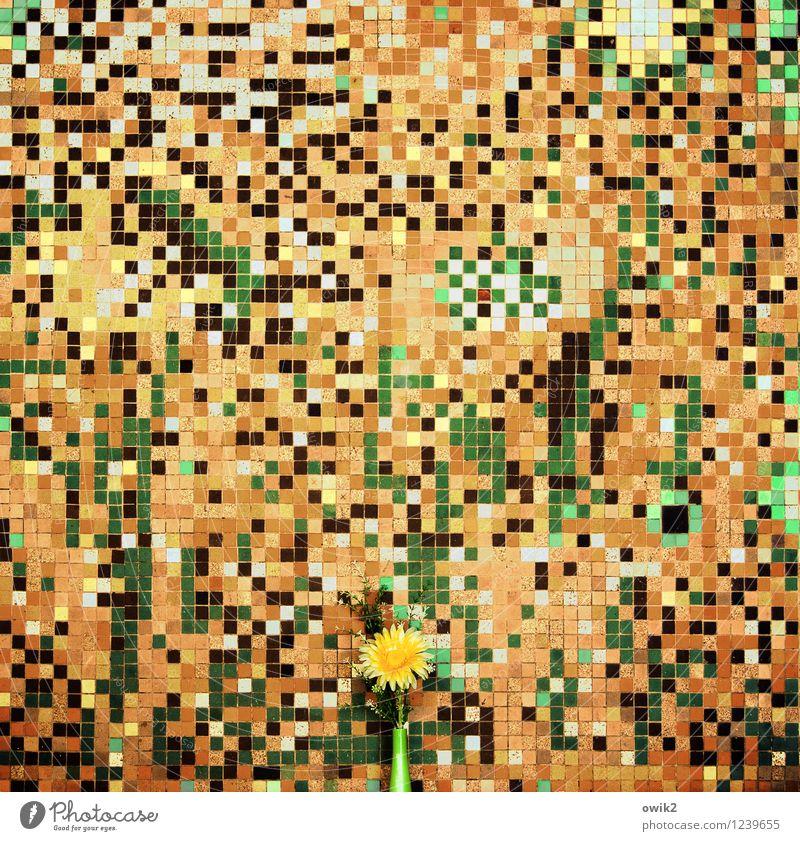 Kunstblume Stil Design Kunstwerk Mosaik Mosaiksteinchen Teile u. Stücke durcheinander viele Blume Blüte Kunststoff Blühend retro verrückt mehrfarbig gelb gold