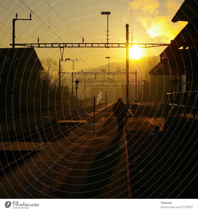 8:00 Start Frau Hund Sonnenaufgang Gleise Licht Eisenbahn Beginn Morgen Rauch Bahnhof Winter Frieden Stimmung Frühaufsteher arbeiten gehen 8 Uhr