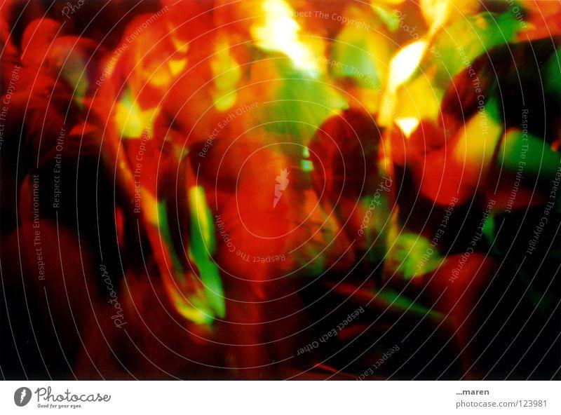 lomoparty 2 Lomografie Party mehrfarbig Club laut Licht dunkel Mensch eng überlagert Nacht Hand Fotografieren Momentaufnahme Feste & Feiern Tanzen Wildtier