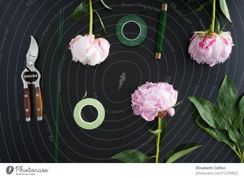 Pfingstrosen binden grün Blume Frühling rosa Arbeit & Erwerbstätigkeit Dekoration & Verzierung Dinge Beruf Blumenstrauß Handwerk Werkzeug Arbeitsplatz sortieren