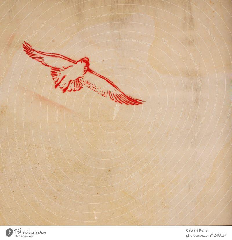 birds flying high Kunst Graffiti Tier Vogel 1 Stein einfach frei modern rot Bild Wand Hoffnung Farbfoto Außenaufnahme Textfreiraum rechts Textfreiraum unten Tag