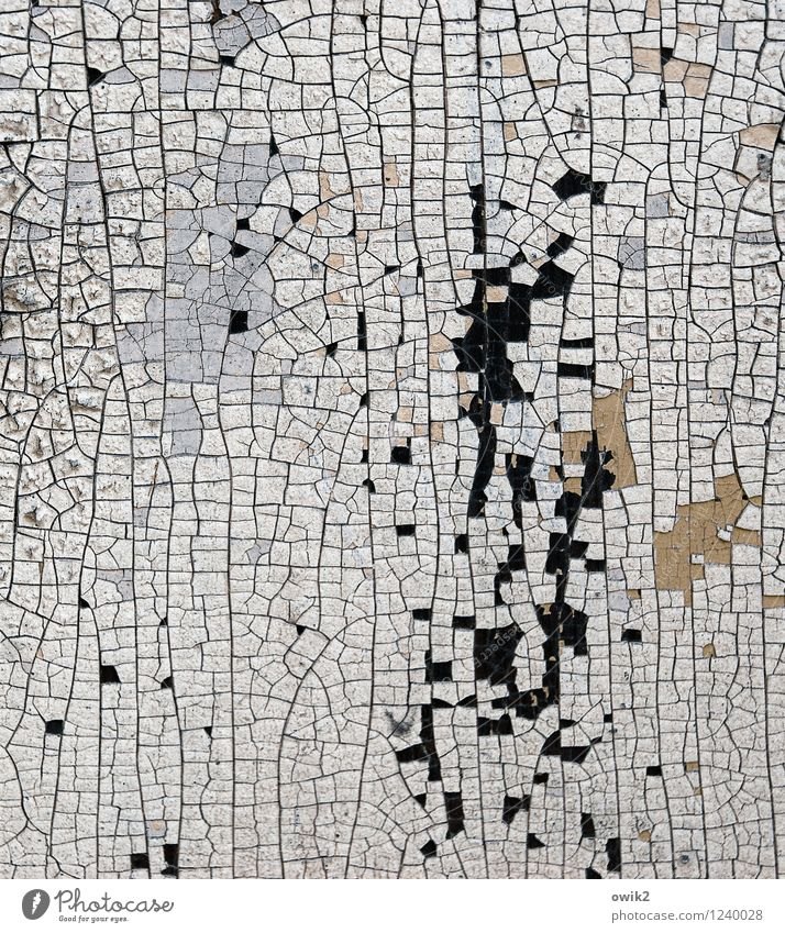 Überbleibsel Kunstwerk Gemälde alt dehydrieren klein nah trocken Verfall Vergänglichkeit Zerstörung Farbspur Riss Teile u. Stücke Zahn der Zeit verfallen