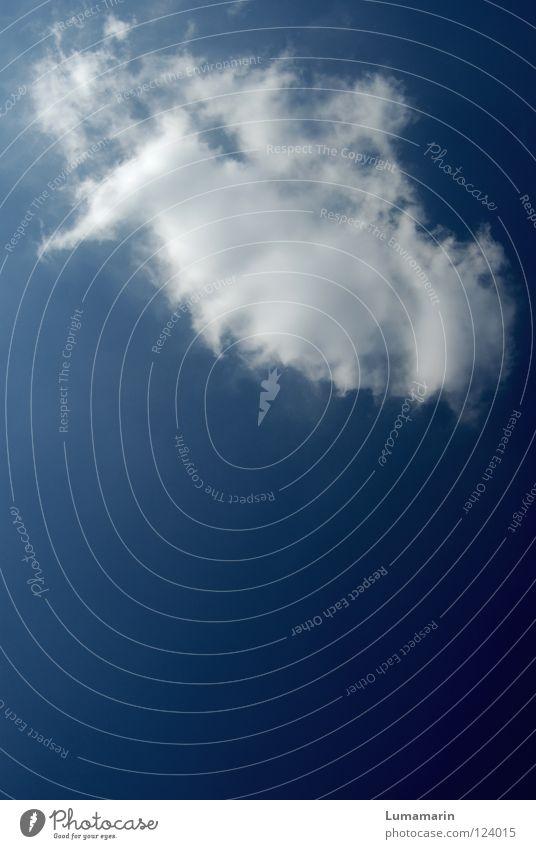 Reisebekanntschaft schön Himmel blau Sommer Ferien & Urlaub & Reisen ruhig Wolken Freiheit träumen Luft hell Wind Wetter fliegen frei Hoffnung