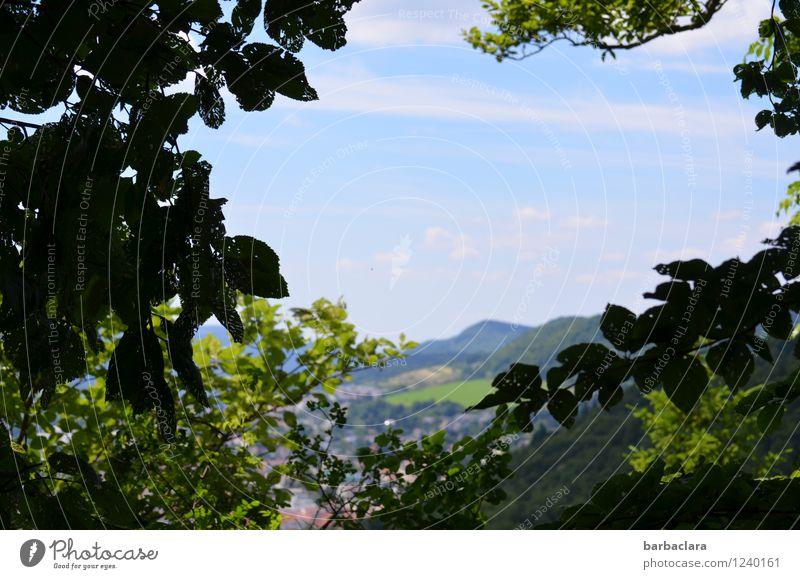 !trash! 2016! | Albblick wandern Natur Landschaft Erde Himmel Sonnenlicht Klima Baum Wald Hügel Berge u. Gebirge Dorf Kleinstadt grün Erholung Freiheit