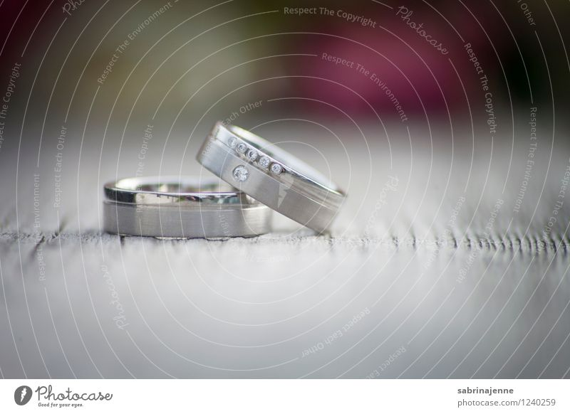 ringe Paar Partner Euphorie Liebe Romantik Hochzeit Ehering Ring Platin silber Goldlegierung Diamantring Farbfoto Außenaufnahme Textfreiraum rechts