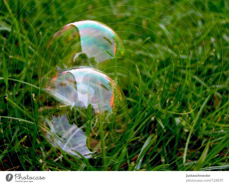 Mit einem Pieks ist alles weg grün Spielen träumen glänzend Wind Frieden Vergänglichkeit Kugel Blase blasen Seifenblase Regenbogen Zauberei u. Magie platzen