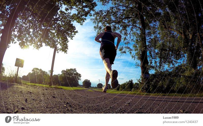 Joggen Mensch Himmel Natur Jugendliche Mann Sommer Sonne Junger Mann 18-30 Jahre Erwachsene Umwelt Wiese Sport Park maskulin Fitness