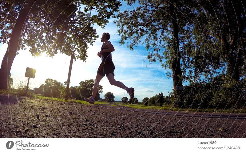 Jogger II Mensch Himmel Natur Jugendliche Mann Sommer Sonne Junger Mann 18-30 Jahre Erwachsene Umwelt Wärme Wiese Wege & Pfade Sport Park