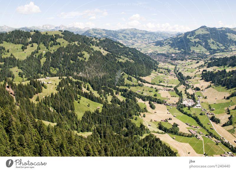 Wispile - Staldenhorn - Grund XIV Himmel Natur Sommer Erholung ruhig Ferne Wald Berge u. Gebirge Sport Freiheit fliegen Zufriedenheit Luft Luftverkehr hoch
