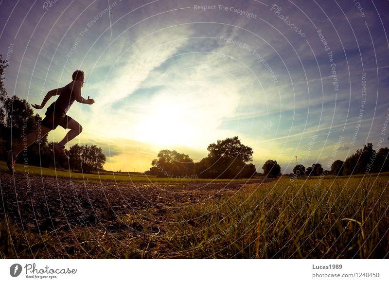 Sprint Mensch Himmel Natur Jugendliche Mann Sommer Junger Mann 18-30 Jahre Erwachsene Wärme Wiese Sport Park maskulin Feld Geschwindigkeit