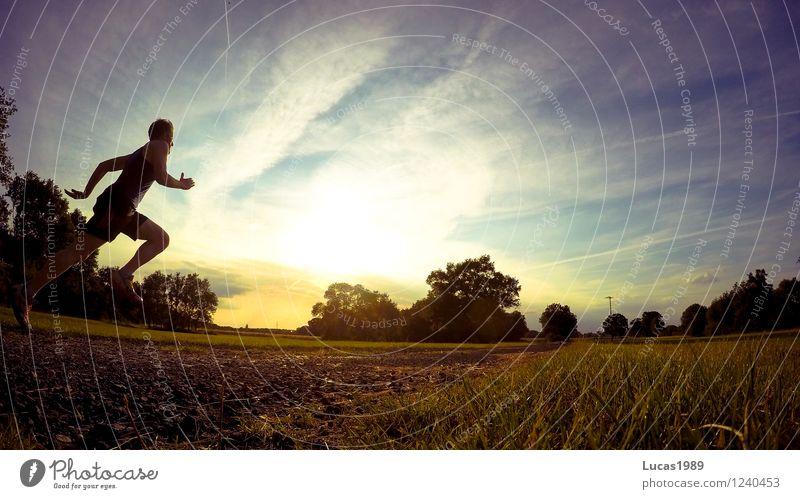 Sportler Mensch Himmel Natur Jugendliche Mann Sommer Baum Landschaft Junger Mann 18-30 Jahre Erwachsene Wärme Wiese Gras maskulin