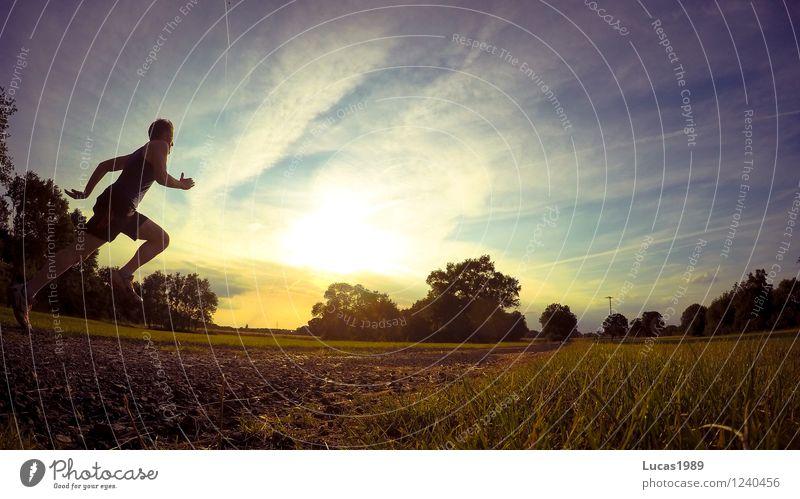 Renn! Mensch Jugendliche Mann Sommer Erholung Junger Mann 18-30 Jahre Erwachsene Wiese Bewegung Sport springen Park maskulin Feld Kraft