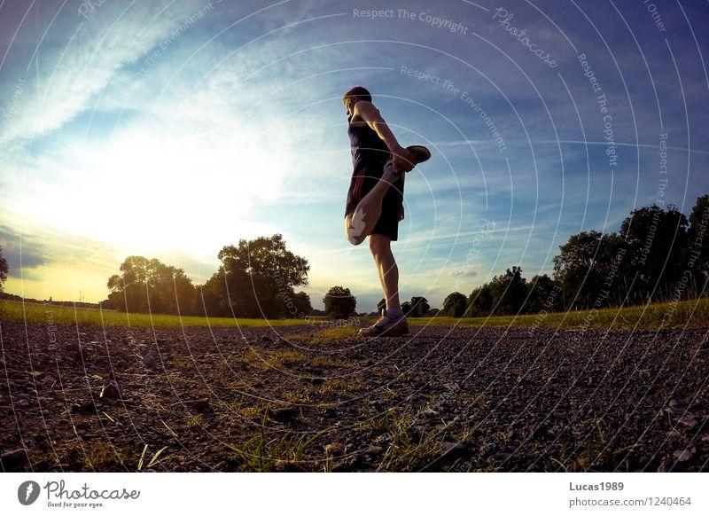 Dehnen Mensch Jugendliche Mann Sommer Sonne Junger Mann 18-30 Jahre Erwachsene Wege & Pfade Sport maskulin Fitness Sport-Training Sportler Muskulatur Joggen