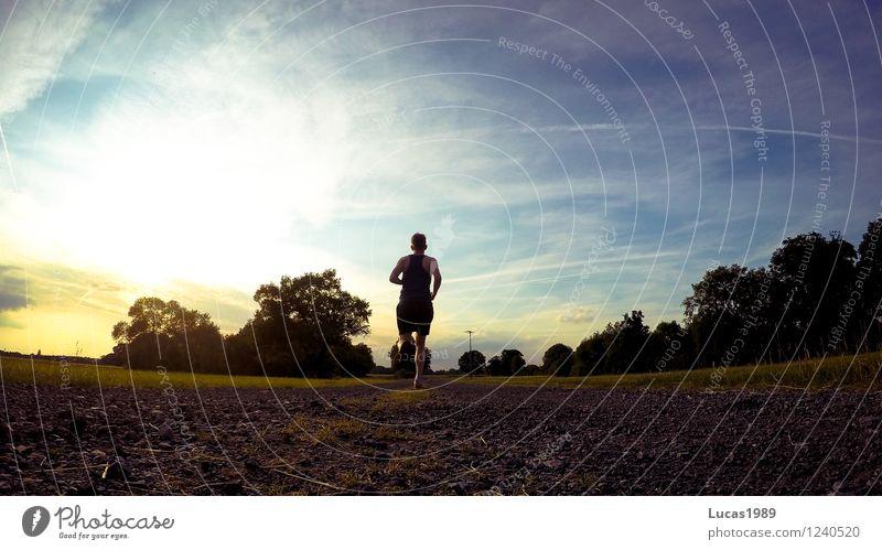 In den Sonnenuntergang Sport Fitness Sport-Training Leichtathletik Triathlon Rennsport Joggen Außenaufnahme Mensch maskulin Junger Mann Jugendliche Erwachsene 1