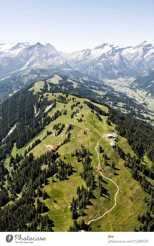 Wispile - Staldenhorn - Grund V Wohlgefühl Zufriedenheit Erholung ruhig Ausflug Freiheit Sommer Berge u. Gebirge Sport Gleitschirmfliegen Sportstätten Natur