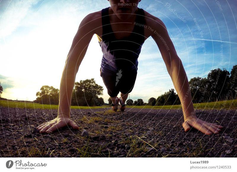 Liegestütze Mensch Himmel Jugendliche Mann Sommer Sonne Baum Junger Mann 18-30 Jahre Erwachsene Wiese Gras Sport Gesundheit Sand maskulin