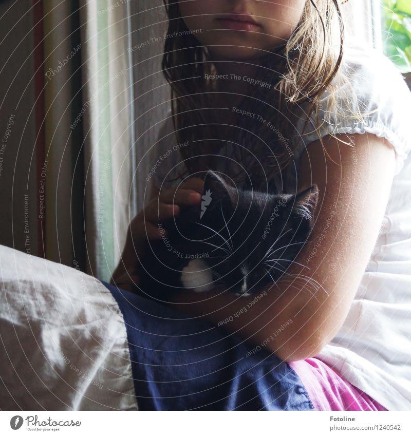 Streicheleinheiten! Katze Mensch Kind Hand Tier Mädchen schwarz Liebe natürlich feminin Haare & Frisuren Kopf Arme Haut genießen Mund