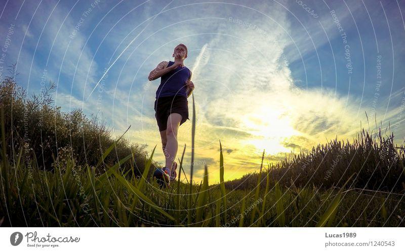 Running Mensch Himmel Natur Jugendliche Mann Junger Mann 18-30 Jahre Erwachsene Umwelt Wiese Gras Sport Gesundheit Park maskulin Feld