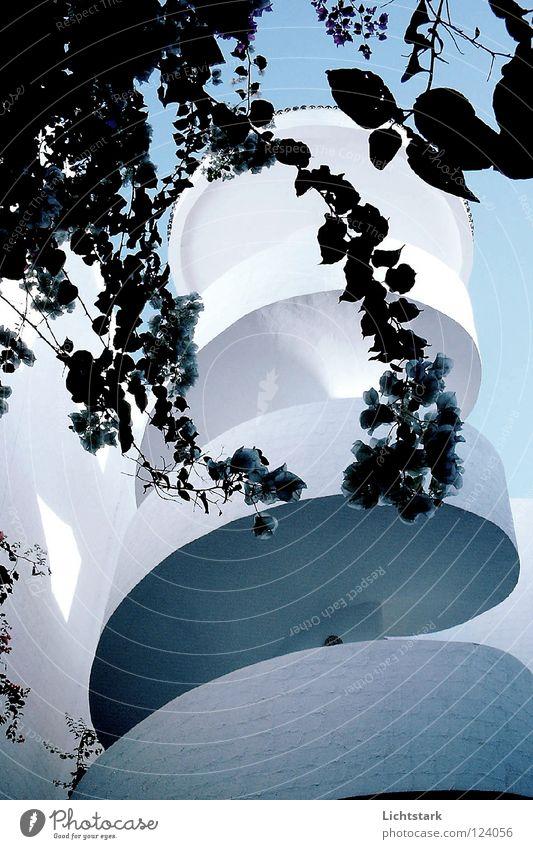 schraub dich rauf Hotel Ferien & Urlaub & Reisen Treppenhaus Architektur Kraft Himmel blau Schnecke planzen lich und schatten