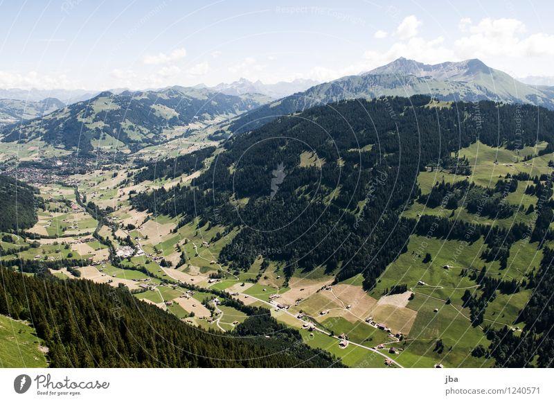Wispile - Staldenhorn - Grund XI Himmel Natur Sommer Erholung ruhig Ferne Wald Berge u. Gebirge Sport Freiheit fliegen Zufriedenheit Luft Luftverkehr hoch