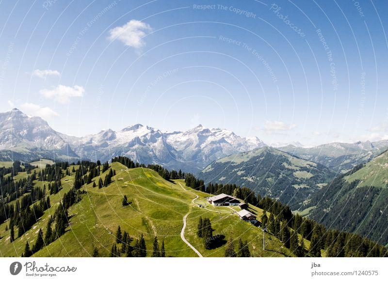 Wispile bei Gstaad Lifestyle Wohlgefühl Erholung ruhig Freizeit & Hobby Ausflug Sommer Berge u. Gebirge Sport Gleitschirmfliegen Sportstätten Natur Landschaft