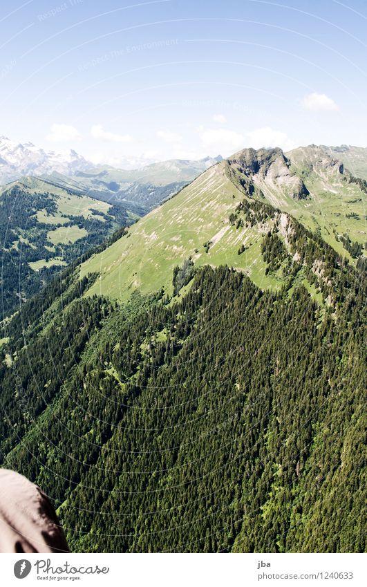***600*** Wispile - Staldenhorn - Grund IX Himmel Natur Sommer Erholung ruhig Ferne Wald Berge u. Gebirge Wärme Sport Freiheit fliegen Zufriedenheit Luft