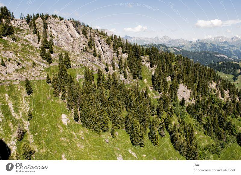 Wispile - Staldenhorn - Grund XIII Wohlgefühl Zufriedenheit Erholung ruhig Ausflug Freiheit Sommer Berge u. Gebirge Sport Gleitschirmfliegen Sportstätten Natur