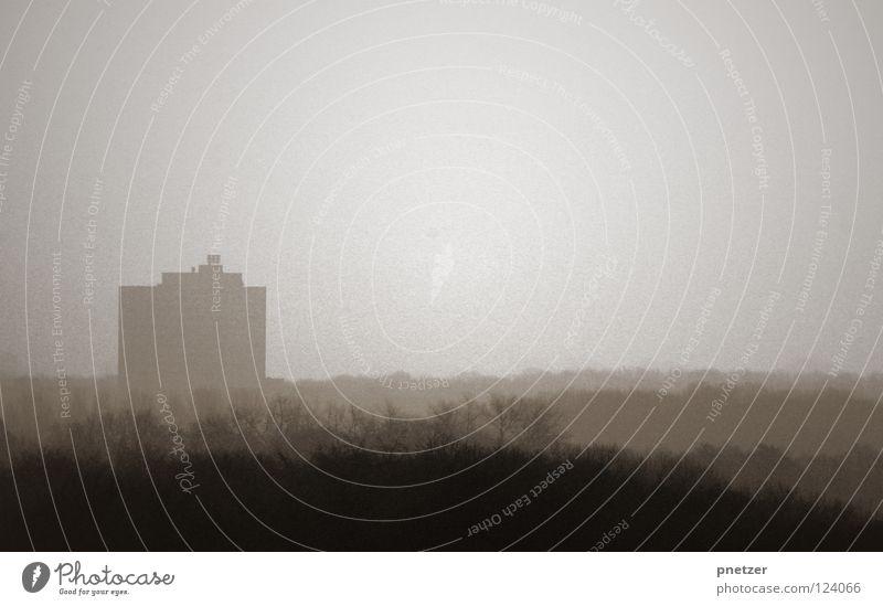 Kölner Nebel Himmel weiß Baum Sonne Haus schwarz Ferne Wald Landschaft hell Stimmung Hochhaus hoch schlechtes Wetter