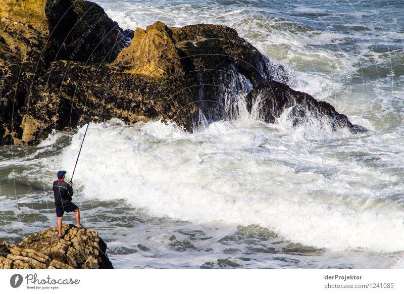 Der standhafte Angler Angeln Abenteuer Ferne Freiheit Mensch maskulin Junger Mann Jugendliche Umwelt Natur Landschaft Pflanze Tier Sommer Felsen Wellen Küste