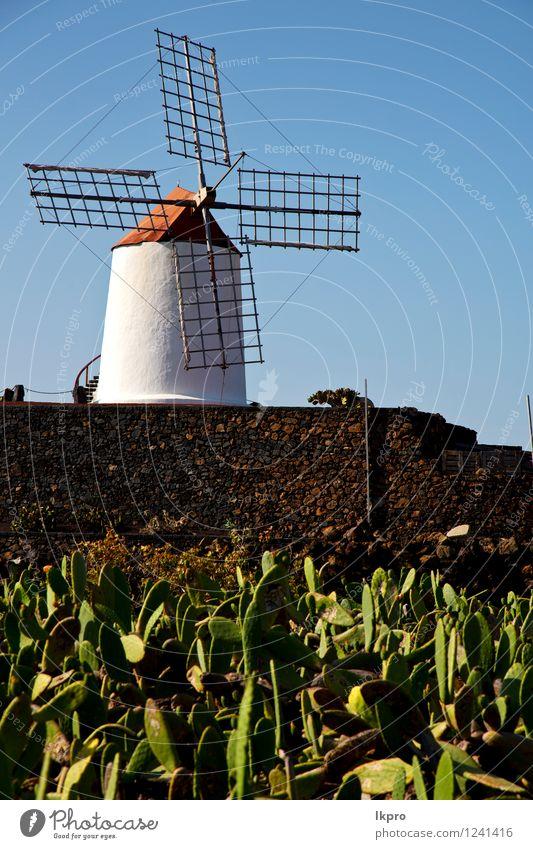 Kaktuswindmühlen in der Insel von Berge u. Gebirge Erneuerbare Energie Windkraftanlage Natur Pflanze Himmel Wolken Sturm Hügel Felsen Architektur Fassade