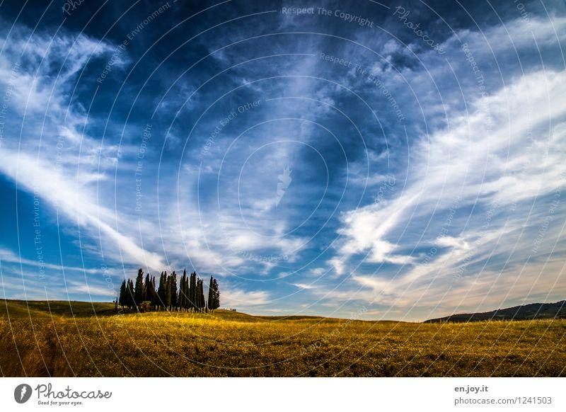 must see Himmel Natur Ferien & Urlaub & Reisen blau Sommer Erholung Landschaft ruhig Wolken Ferne gelb Leben Wiese Gras Horizont Feld