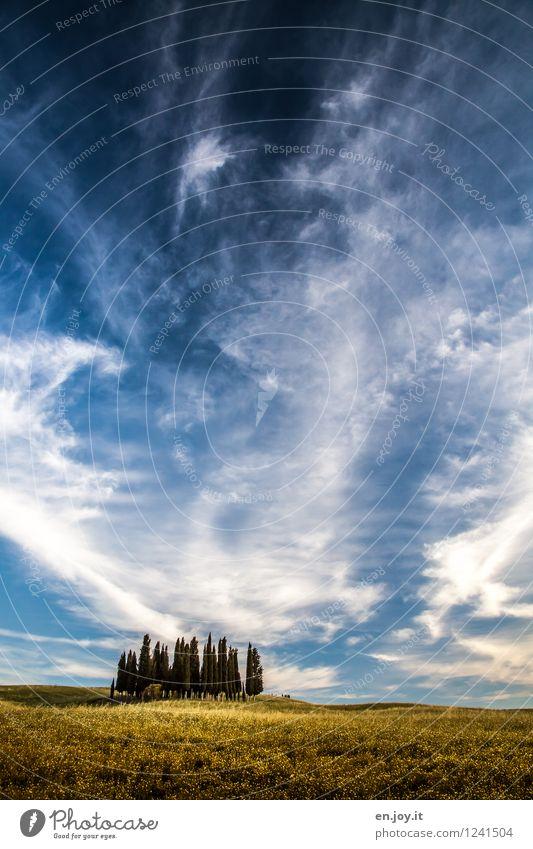 es war einmal.. Himmel Natur Ferien & Urlaub & Reisen Pflanze blau Sommer Landschaft Wolken ruhig Umwelt gelb Horizont Tourismus Feld Idylle Ausflug