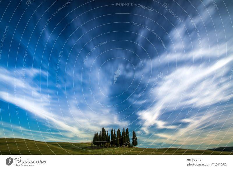 Augenblicke Himmel Natur Ferien & Urlaub & Reisen blau grün Sommer Erholung Landschaft Wolken ruhig Ferne Umwelt Leben Wiese Zeit Freiheit