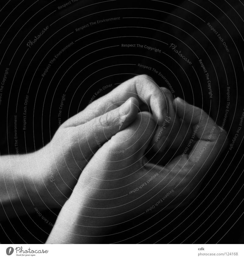 Verbindung aufnehmen Mensch Hand ruhig dunkel Gefühle Bewegung Spielen Denken hell Zusammensein Haut Finger einfach berühren festhalten Klarheit