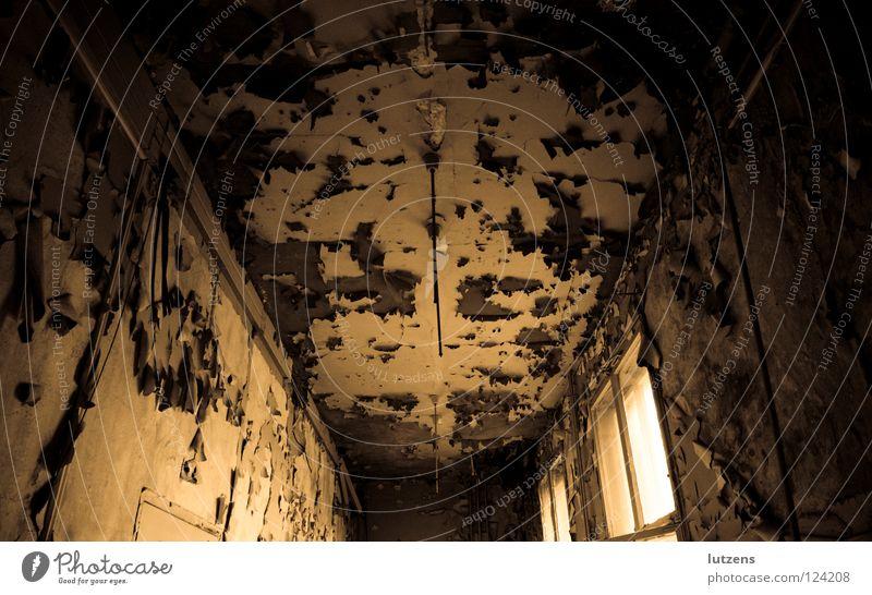 abgeblättert gruselig Kammer Tapete abblättern trocken verfallen Angst Panik alt schäbig Einsamkeit