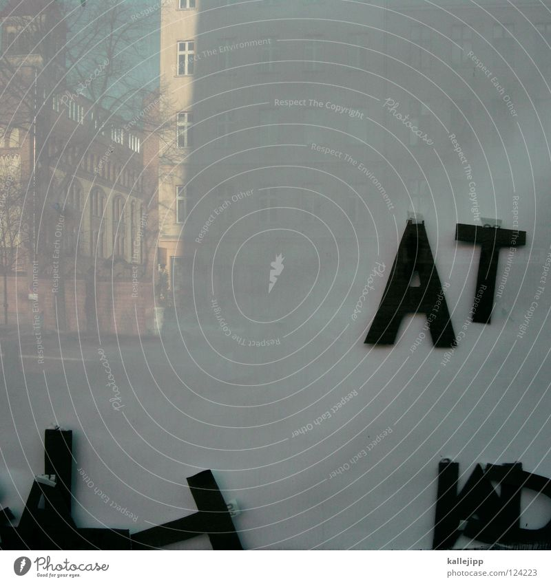 tat-bestand Karton Typographie Buchstaben Design Schablone Beton Schaufenster Wand Ladengeschäft Klebstoff Dekoration & Verzierung Wort Architektur Natur narura