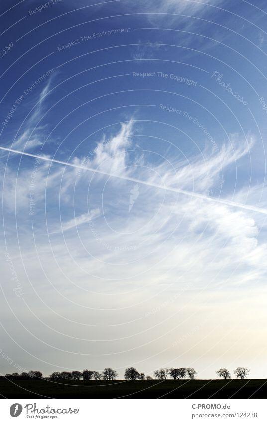 nature skyline Himmel Natur weiß Baum Winter Wolken Ferne Wiese Horizont Skyline Kondensstreifen Hochformat