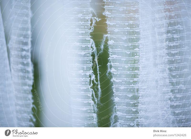 Hinter der Gardine Fenster Dekoration & Verzierung alt außergewöhnlich kaputt retro grün weiß Frustration Verbitterung bizarr Perspektive Stimmung Verfall