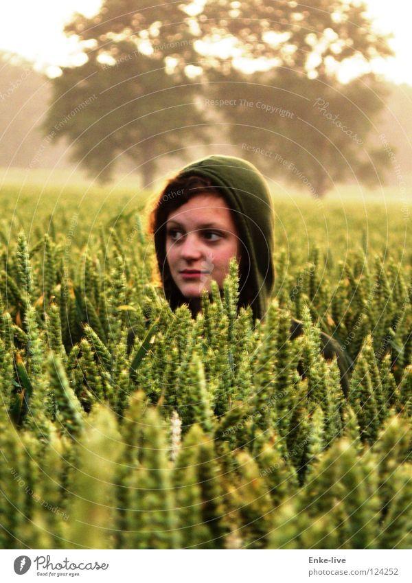 Kornmädchen Natur grün Baum Einsamkeit gelb Horizont verstecken Weizen