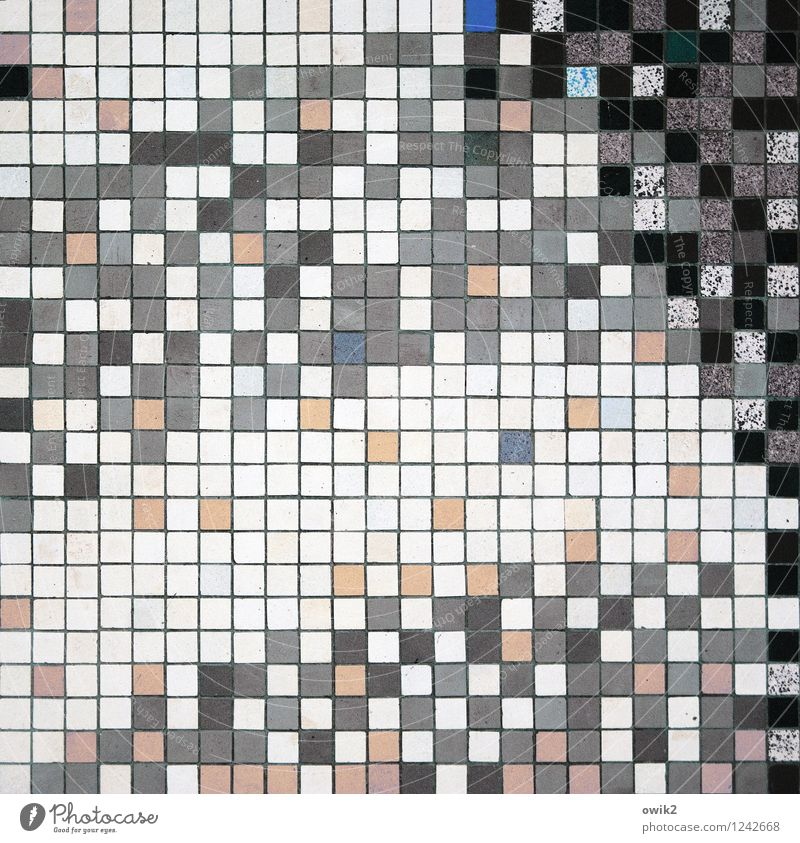 Kleine Kacheln weiß schwarz grau Kunst Zusammensein rosa Design Ordnung verrückt viele Fliesen u. Kacheln Quadrat durcheinander Kunstwerk Präzision Mosaik