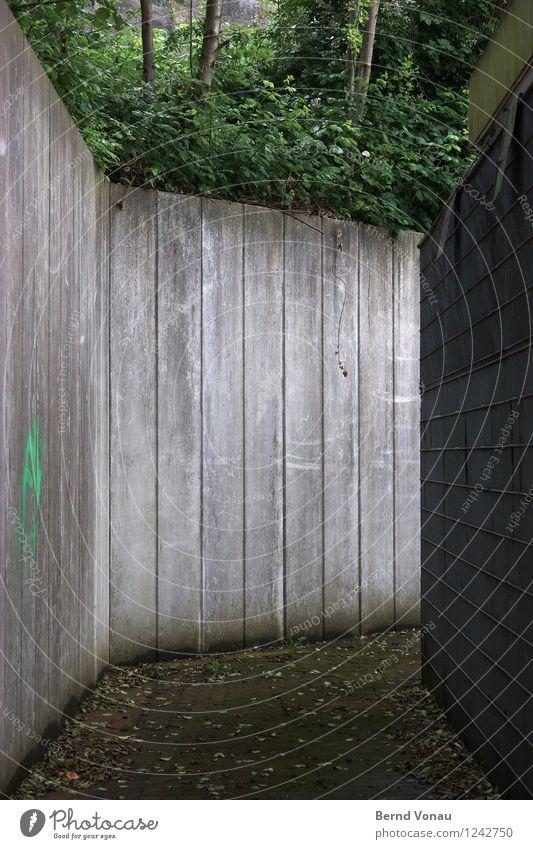 Zwangsläufig Stadt Mauer Wand Wege & Pfade Gefühle Platzangst Beton hoch eng richtungweisend Baum Natur trist dreckig Traurigkeit Urbanisierung Barriere Zaun