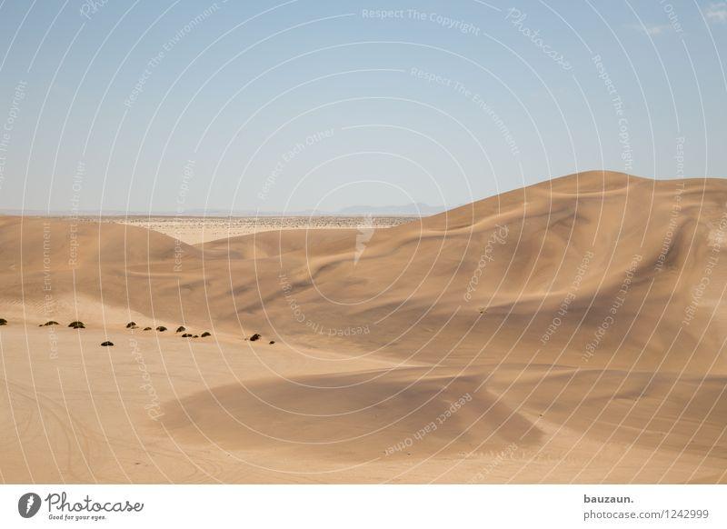 . Natur Ferien & Urlaub & Reisen Sommer Sonne Landschaft Wärme Freiheit Sand Wetter Tourismus Ausflug Klima Schönes Wetter Abenteuer Wandel & Veränderung trocken