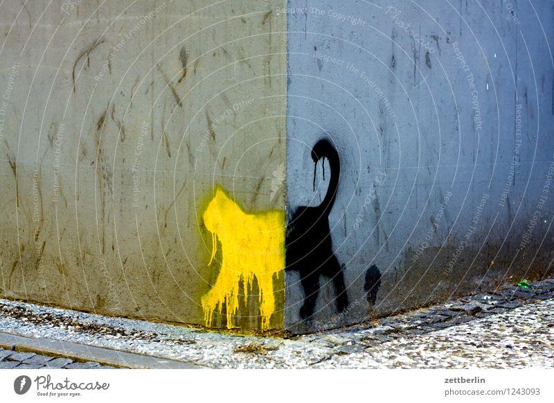 Schwarze Katze von links nach rechts Stadt Haus Wand Graffiti Kunst Stadtleben Textfreiraum Ecke Grafik u. Illustration Bürgersteig Bild Straßenkunst Zeichnung