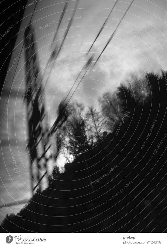 Ceské dráhy Himmel Ferien & Urlaub & Reisen Baum Wolken dunkel Traurigkeit Verkehr Geschwindigkeit gefährlich Eisenbahn bedrohlich Stahl Neigung Leitung Eile Zerreißen