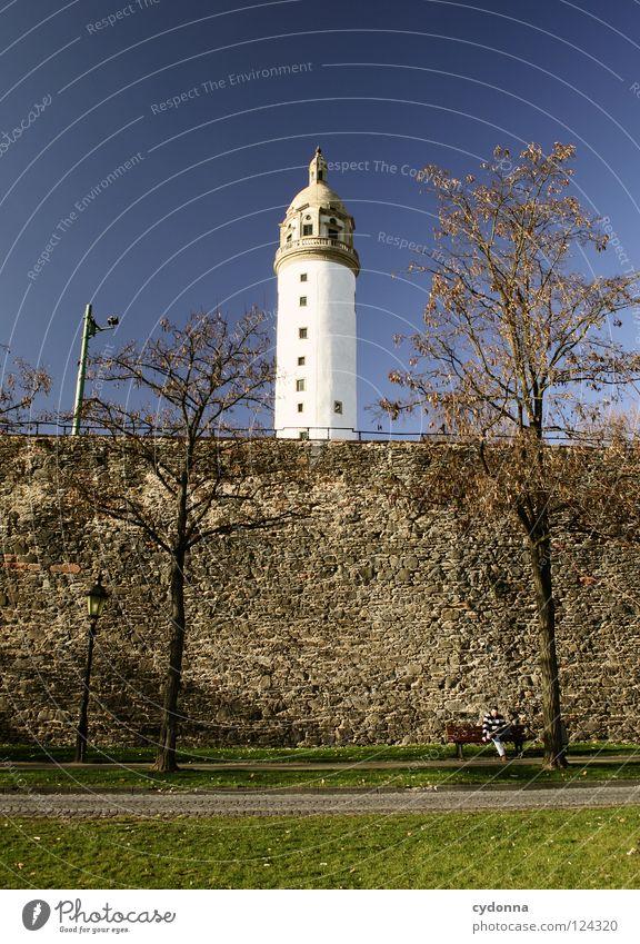 Blaupause Main Frankfurt am Main Ereignisse Ferien & Urlaub & Reisen entdecken Erholung genießen Aktion Licht schön Promenade Spaziergang gehen Mauer Baum Wiese