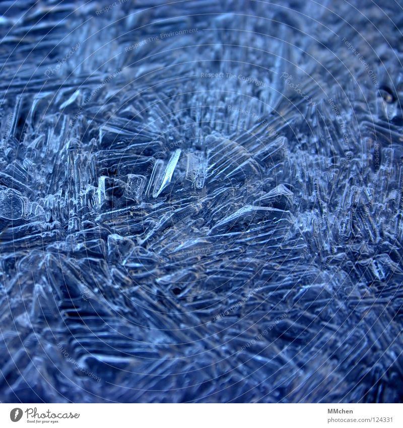 Eifel: -2°C gefroren kalt Eiskristall Ordnung bewegungslos Winter erstarrt Frost Kristallstrukturen kristallisiert 0° Gefrierpunkt Wetter blau