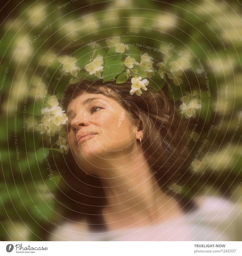 Blütenträume schnuppern... Mensch Frau Natur Jugendliche Pflanze Sommer Junge Frau Sonne Erholung Erotik ruhig Freude Erwachsene Gesicht feminin