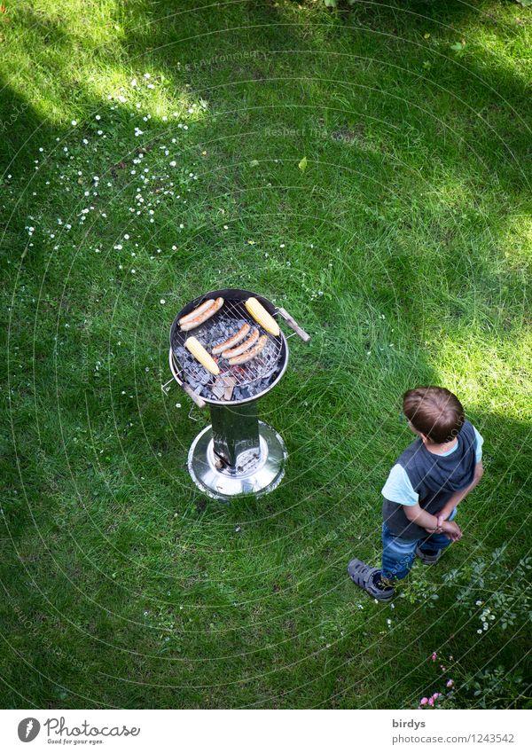 Geduldsprobe Fleisch Wurstwaren Ernährung Grillen Garten Kind 1 Mensch 3-8 Jahre Kindheit Wiese beobachten Duft warten lecker Vorfreude Begierde geduldig