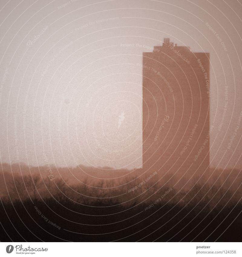 Aerosol Haus Hochhaus Ferne Nebel Wolken schlechtes Wetter Baum Wald grau braun Köln Winter Himmel hoch Perspektive Silhouette Sepia Schatten