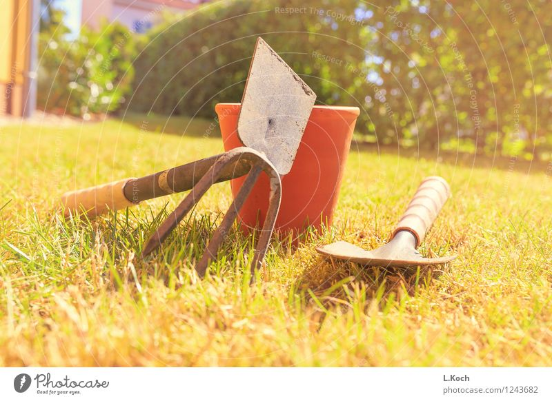 Gartenarbeit Freizeit & Hobby Sommer Dienstleistungsgewerbe Handwerk Ruhestand Feierabend Werkzeug Schaufel Gras Sträucher Park Wiese Rasen Grashalm Farbfoto